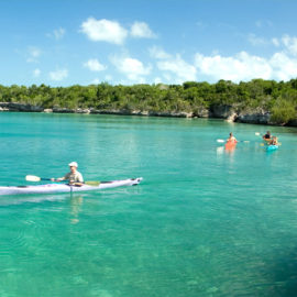 What to expect from a kayak experience in the Bahamas